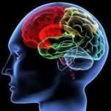 Brain Retraining
