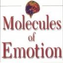 https://ei-psychology.org/images/avatar/group/thumb_0182d931cf1c76cf5afa6eba9ab72e06.jpg